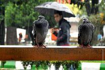 دمای هوای گیلان 8 تا 15 درجه کاهش می یابد/ سامانه بارندگی تا یکشنبه هفته آینده در استان ادامه دارد