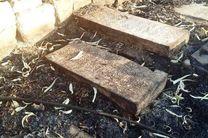 قبرستان تاریخی دارالسلام شیراز دچار آتش سوزی شد