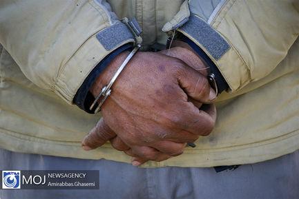 دستگیری سارق