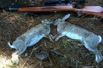دستگیری 2شکارچی غیر مجاز خرگوش در چادگان