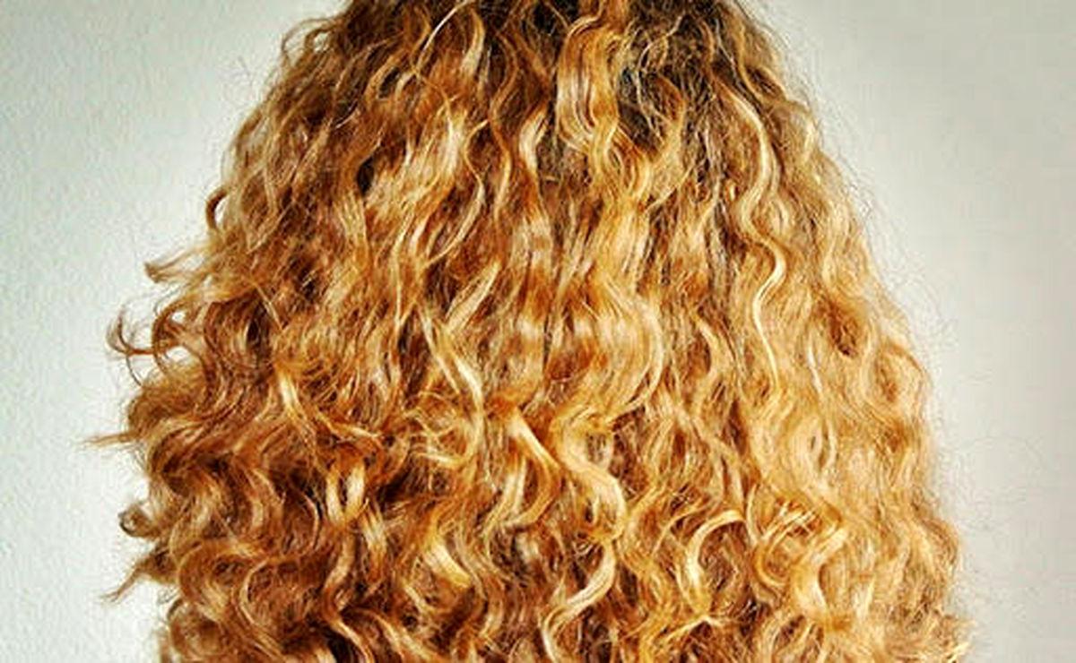روز جهانی مو فرفری ها/ چگونه از موهای فر مراقبت کنیم؟