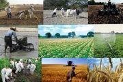 لزوم پاسخگویی جدی مسئولان جهاد کشاورزی در رفع مشکل دامداران