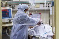 بستری 137 بیمار کرونایی در البرز