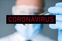 شمار جانباختگان ویروس کرونا در سرزمین های اشغالی به 29 نفر رسید