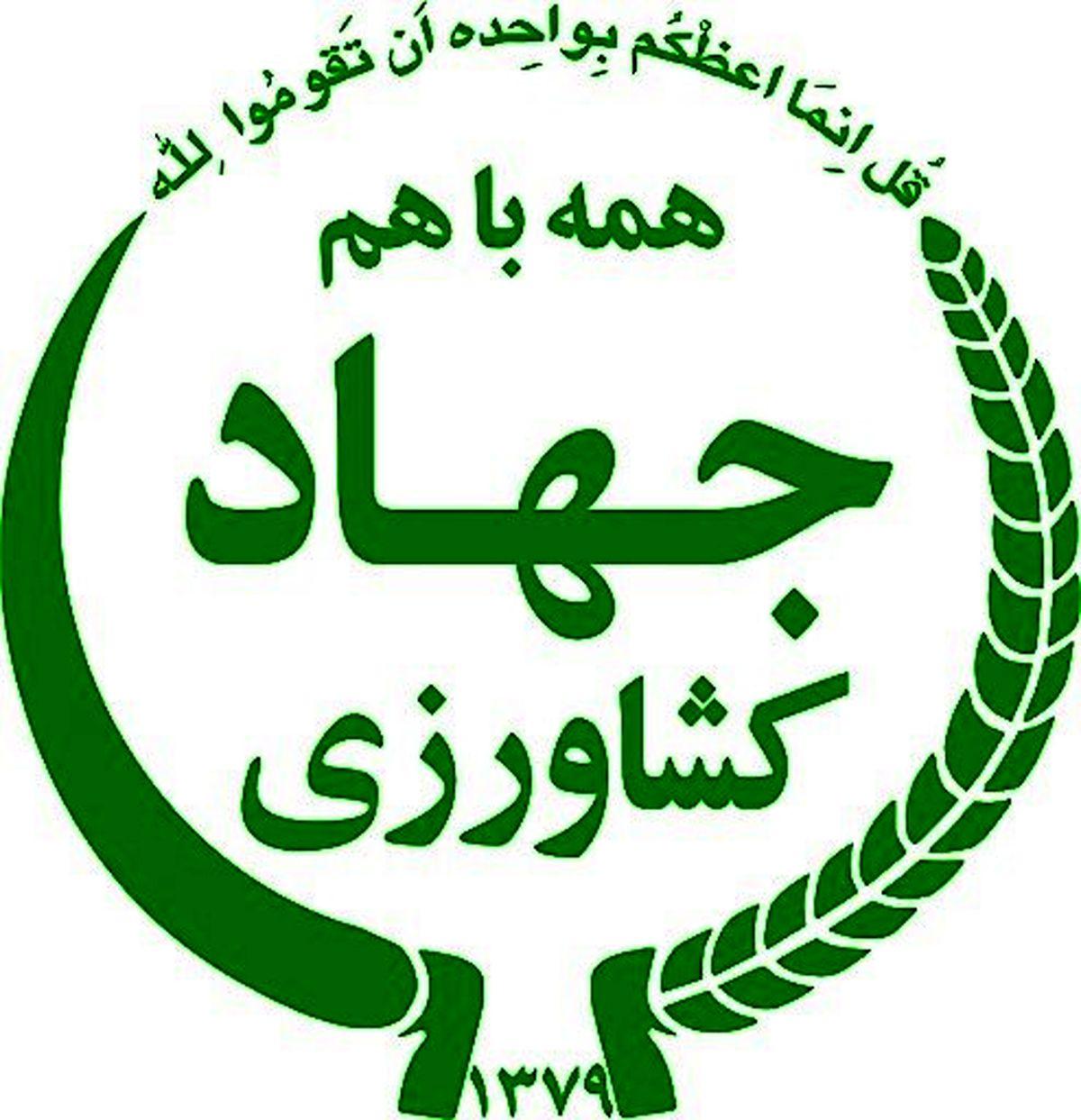 10 هزار تن نهاده دامی نیمه اول فروردین 1400 در یزد توزیع شد