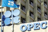 وزیر نفت ایران در اجلاس اوپک شرکت نمیکند