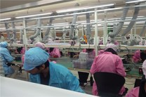 کارخانه تولید گوشی GLX در آستانه تعطیلی قرار گرفت