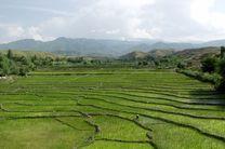 مصوبه جلوگیری از تغییر کاربری کشاورزی و تخریب محیط زیست ابلاغ شد
