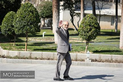 حاشیه جلسه هیات دولت - ۲۴ بهمن ۱۳۹۷/علیاکبر صالحی رییس سازمان انرژی اتمی