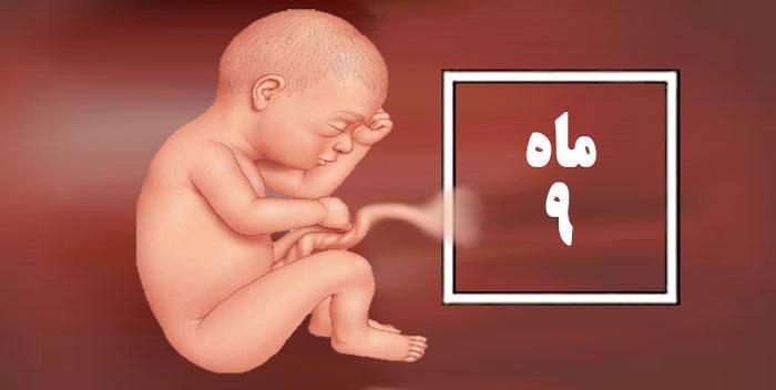 راهنمای کامل ماه نهم بارداری/ در ماه نهم بارداری چه می گذرد؟
