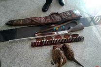 دستگیری ۴ شکارچی قرقاول در بهشهر