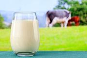 نرخ جدید خرید حمایتی شیر خام هر لیتر 1440 تومان شد