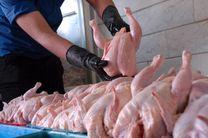 عرضه مرغ دولتی برای شکستن قیمت گوشت مرغ در بازار