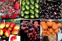 اعترافات قاچاقچی میوه؛ روش عبور موز اسرائیلی و سیب فرانسوی از مرزهای ایران!