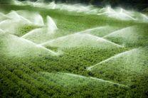 اجرای آبیاری نوین در ۲ هزار و ۶۶۰ هکتار باغ های استان  یزد