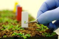 20 درصد تولید کشاورزی را در ایران بالا می بریم/فناوری کشاورزی مقاوم به آب را به ایران منتقل می کنیم
