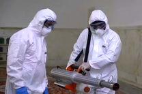 دوره آموزشی پیشگیری از ویروس کرونا در مهریز برگزار می شود