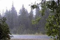 هوای استان گیلان در روز طبیعت بارانی است/بارش برف در ارتفاعات