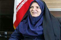 وزارت خارجه نقش اصلی را در کسب سهم بازار برای تولیدات داخلی دارد