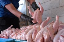 قیمت جدید مرغ در بازار اعلام شد/ کاهش قیمت از 14 فروردین