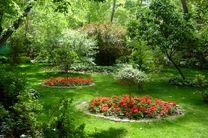 ۲۵.۲متر ، سرانه فضای سبز هر شهروند اصفهانی است