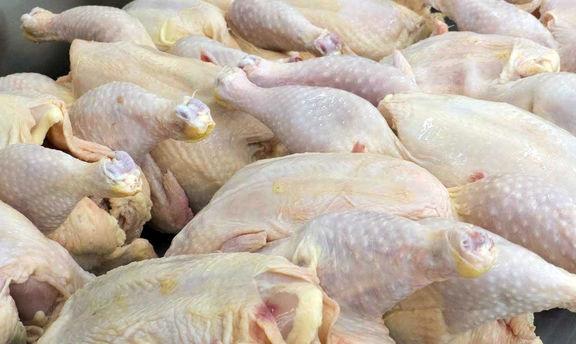 کرایه حمل و نقل قیمت مرغ و ماهی را 15 درصد افزایش داد/توزیع مرغ دولتی ادامه می یابد