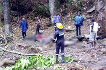 سقوط درخت در غنا 18 نفر را به کام مرگ کشاند و 20 نفر را زخمی کرد
