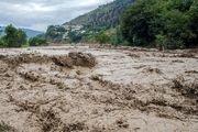 خسارتهای جانی در استان به 6 تن رسید