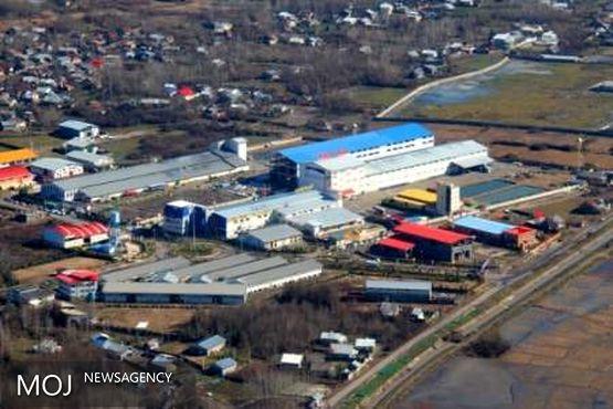 افتتاح بزرگترین واحد سلولوزی کشور در آینده نزدیک در گیلان