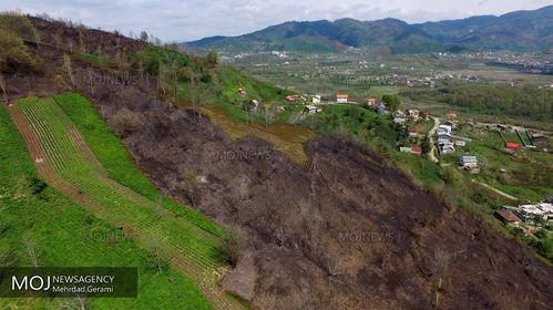پایان آتش سوزی در جنگل های لاهیجان