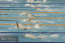 اعزام 4 شناگر ایرانی به مالزی برای کسب سهمیه المپیک