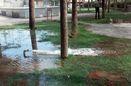 انشعابات غیرمجاز آب در فضای عمومی قطع می شود