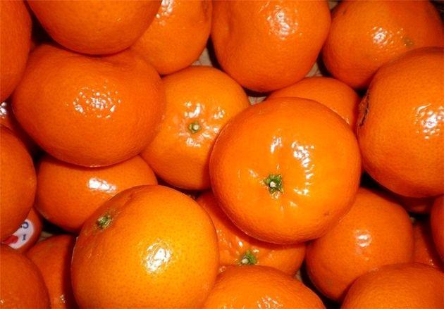 استقبال پاکستان از آزاد شدن واردات نارنگی این کشور به ایران