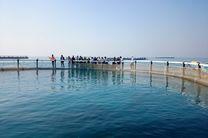 هرمزگان در صدر تولید ماهی پرورشی در دریا در کشور