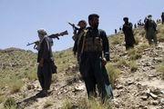 طالبان 8 کارمند کمیسیون انتخابات افغانستان را به قتل رساند