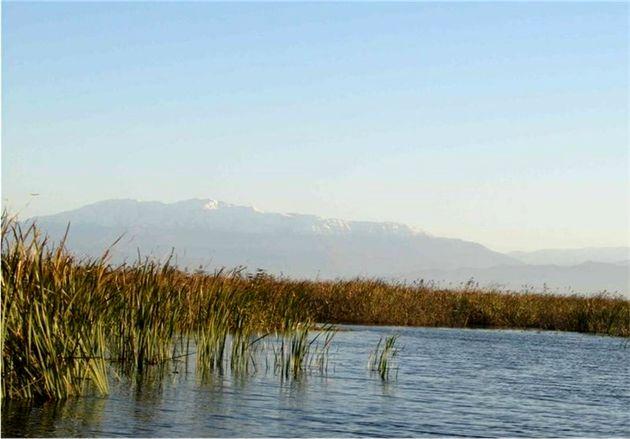سطح آب در تالاب بینالمللی آلاگل کاهش یافت