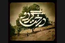 رونمایی از گریم متفاوت مهران مدیری در فیلم درخت گردو