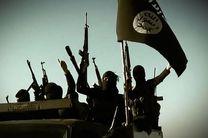 ترکیه فرآیند استرداد مبارزان خارجی داعش را آغاز کرد