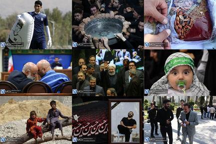 عکس منتخب هفته - ۱۰ تا ۱۶ شهریور ۱۳۹۸