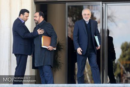 حاشیه جلسه هیات دولت - ۱۹ دی ۱۳۹۷/علی اکبر صالحی رییس سازمان انرژی اتمی