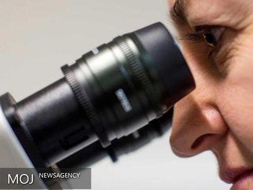 ژن افزایش دهنده خطر ابتلا به سرطان پروستات کشف شد