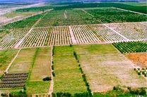 اجرای طرح کاداستر در یک میلیون هکتار از اراضی تهران