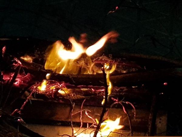 برگزاری آیین چهارشنبهسوری در بندرعباس