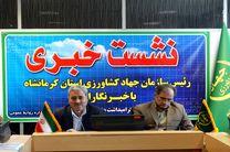 کرمانشاه رتبه اول تولید نخود، دوم ذرت و پنجم گندم در کشور را دارد
