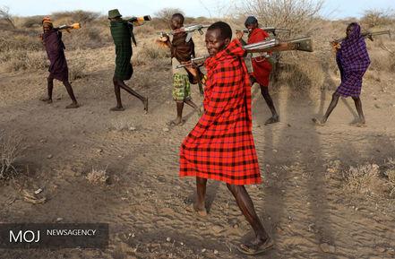 چگونگی پرورش دام در کشور کنیا