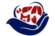 اهدای عضو یک بیمار 35 ساله مرگ مغزی در یزد