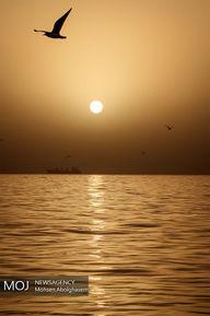 خلیج+فارس+تا+همیشه+فارس (1)