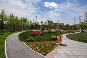 فضای سبز منطقه ۶ در سال جاری 16 هزار مترمربع افزایش یافت