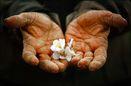 بیش از 50 درصد دعاوی کارگری لرستان با صلح و سازش مختومه شده است