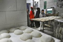 ۱۸۵ نانوایی متخلف در مازندران شناسایی شده است
